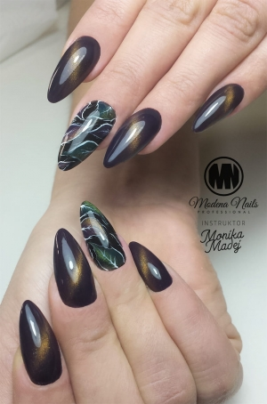 Cat Eye Thermo Gel Polish NO: 010