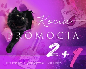 Promocja - Cat Eye Gel Polish 2+1 gratis !